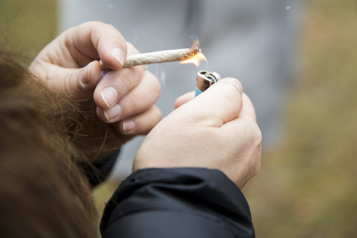 Étude sur la consommation de cannabis En baisse chez les mineurs, en hausse chez les adultes