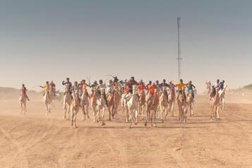 Sahara Chaleur, gloire et vitesse: à Ingall, une des principales courses de chameaux)