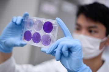 COVID-19: le Brésil investit dans la mise au point du vaccin expérimental )
