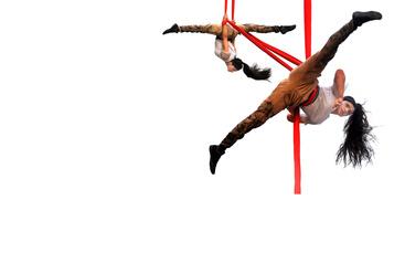 Décennie2010: lareconnaissance du cirque