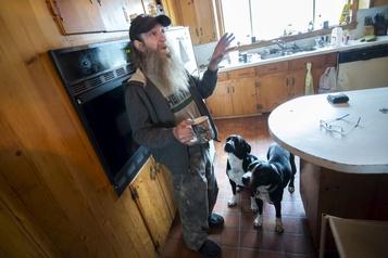 Attaque de chiens à Potton: le propriétaire accusé
