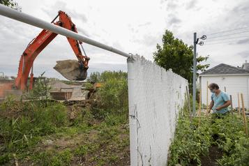 Projet immobilier:le Groupe Mach abat des arbres après en avoir promis la conservation )