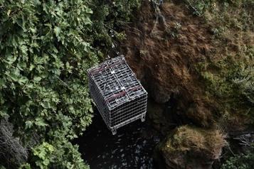 Les vignerons grecs s'essayent au vieillissement en rivière)