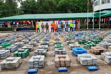 Colombie Plus de 116 tonnes de cocaïne saisies en un mois et demie)