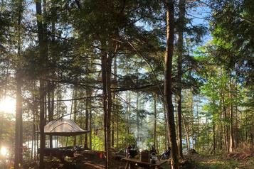 Dormir et jouer dans les arbres en Outaouais)