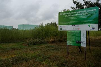 Terrains municipaux contaminés Montréal lance des travaux de réhabilitation dans l'est de la ville)