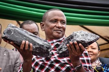 Tanzanie: un mineur devient multimillionnaire avec deux morceaux de tanzanite)