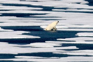 Le sol de l'Arctique est un émetteur net de carbone