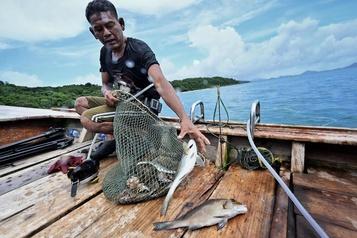 Thaïlande La pandémie, une trêve pour «les gitans des mers» menacés par le tourisme)