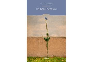 Un beau désastre: les touches de couleur de ChristineEddie★★★½)