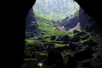 Son Doong, la plus grande grotte du monde, menacée)