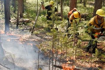 Les incendies se poursuivent en Sibérie avec des températures record)