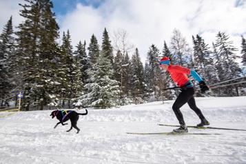 Skier avec Fido)
