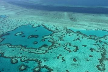 Australie La Grande Barrière de corail évite la liste des sites en péril de l'UNESCO)