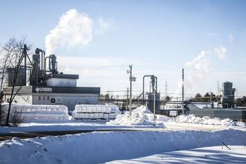 Lauzon Planchers cesse sa coupe forestière: 165 emplois touchés