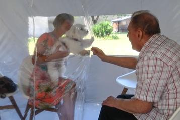 COVID-19: «Une bulle du bonheur» qui permet aux familles de se rapprocher)