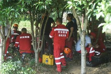 Chine: des léopards en liberté sèment la panique)