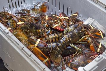 Conflit sur le homard Manif en solidarité avec les pêcheurs mi'kmaq en Nouvelle-Écosse)