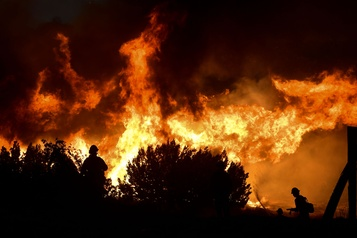 Californie Les incendies de forêt prouvent le changement climatique, dit Tim Cook)