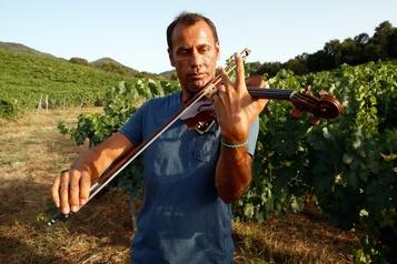 Un violoniste aussi à l'aise dans un vignoble qu'au Carnegie Hall