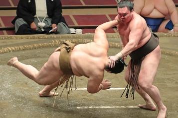 Japon: 19 lutteurs de sumo positifs au coronavirus)