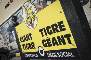 Tigre Géant choisit son nouveau chef de la direction)