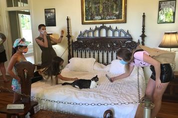 La maison d'Hemingway attire les visiteurs avec ses chats à six doigts)
