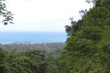 Samaná: l'autre République dominicaine