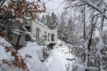Maison Forêt: la fabrique de souvenirs)