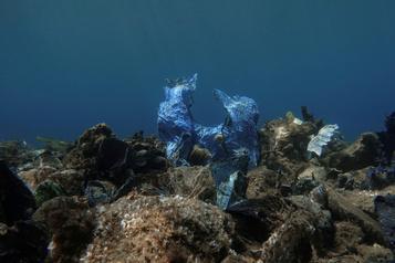 Trente fois plus de plastique au fond des océans?? )