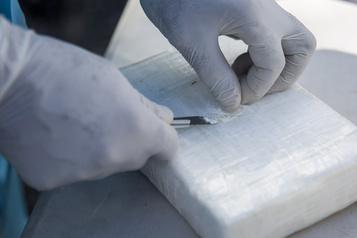 Plus de 50 tonnes de cocaïne saisies lors d'opérations coordonnées par la Colombie)