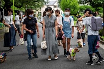 Au Japon, une patrouille de chiens veille sur les enfants)