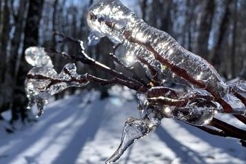 Vosges: les températures douces perturbent les stations de ski