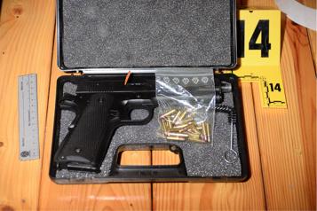 Meurtres des frères Falduto Le pistolet trouvé chez les accusés était fonctionnel )
