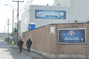 Québec investit 150millions dans Olymel)