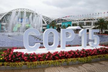 Début de la COP15 biodiversité en Chine