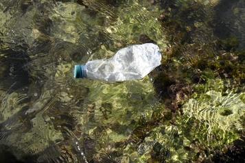 Près de 230000tonnes de plastique jetées chaque année dans la Méditerranée)
