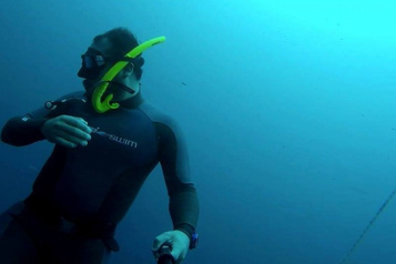 À la recherche du bonheur: une vie aquatique