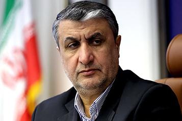 Iran Le chef du nucléaire veut une refonte rapide du réacteur d'Arak pour la recherche)