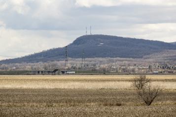Glyphosate  Des impacts sur la biodiversité du mont Saint-Bruno)