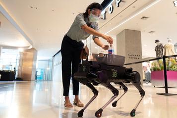 Un chien-robot distributeur de gel hydroalcoolique)