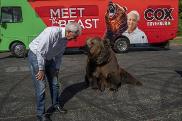 Californie Un candidat au poste de gouverneur fait campagne avec un ours)