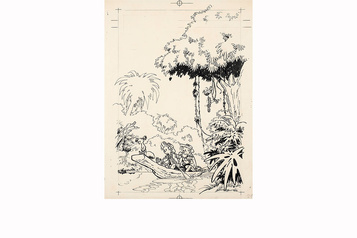 Des dessins de Franquin et d'Hergé aux enchères)