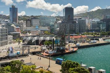 Wellington, capitale de la bière artisanale