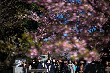 La planète économique: le virus qui menace le Japon