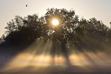 Le soleil neutraliserait le coronavirus sur les surfaces en 30 minutes)