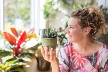 Plantes vertes de Mélanie Grégoire: tous les pouces ont du vert)