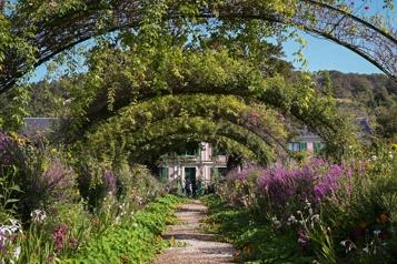 De la vase à l'éblouissement dans les jardins de Monet