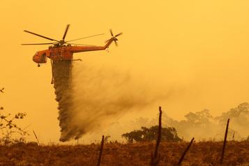 Les incendies de forêt auraient touché 75% des Australiens