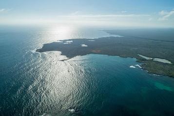 Les Galapagos rouvrent des sites touristiques et la réserve marine)